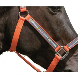 "Недоуздок""Reflex-Design"",Horse-friends арт.51669"