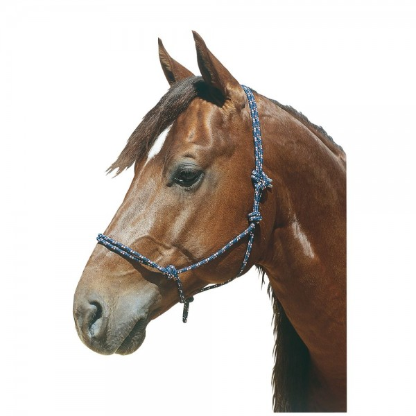 Плетение уздечек для лошадей